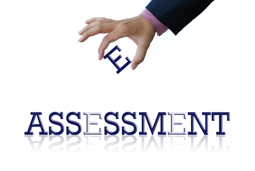 assessment & Litigation