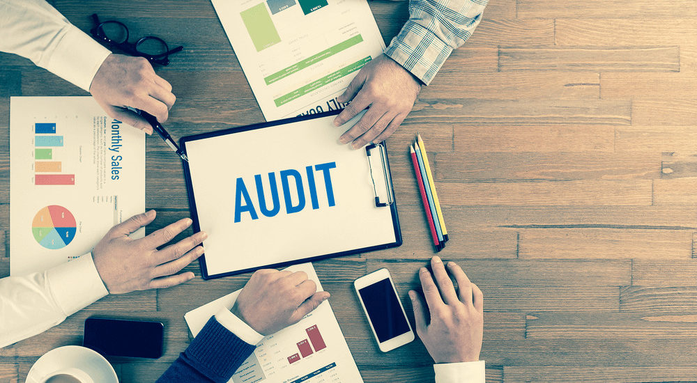 Stock Audit or Inventory Audit
