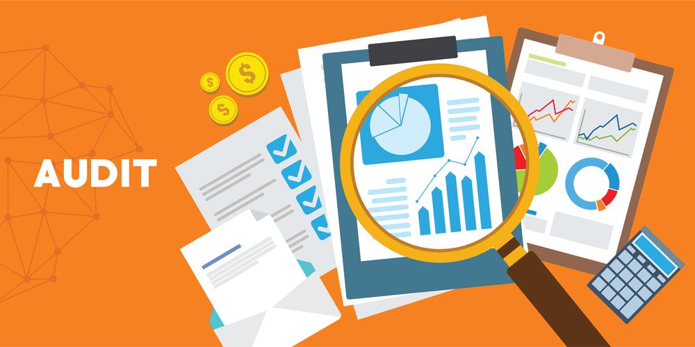 Statutory Audit Checklist