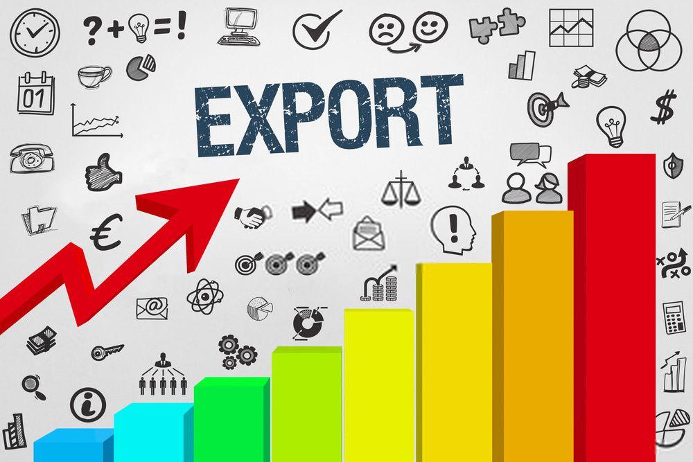 Import Export License - Ezybiz India