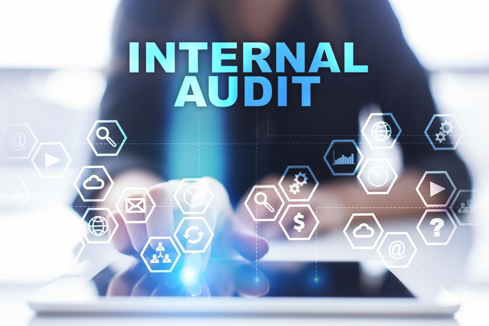 Internal Audit Planning - Ezybiz