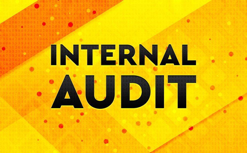 Analytical Procedures in Audit