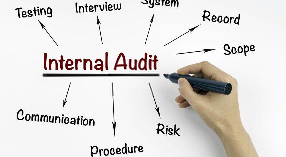 Internal Audit Activity